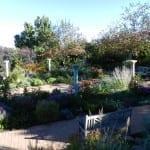 Denver Botanic Gardens Denver Summer