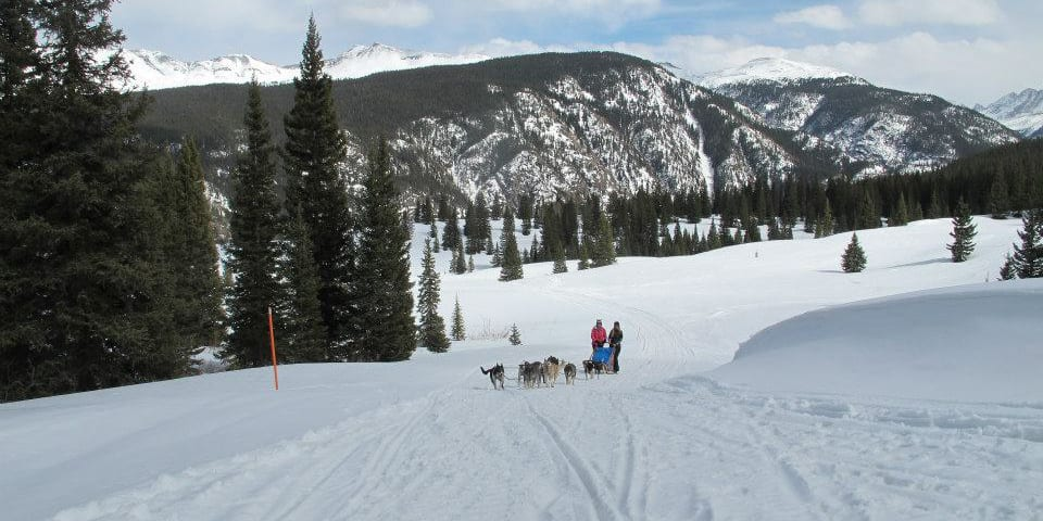 Durango Dog Ranch Sled Tour