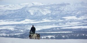 Durango Dog Ranch San Juan Mountains
