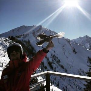 Kate Howe Aspen Ski Instructor Bird