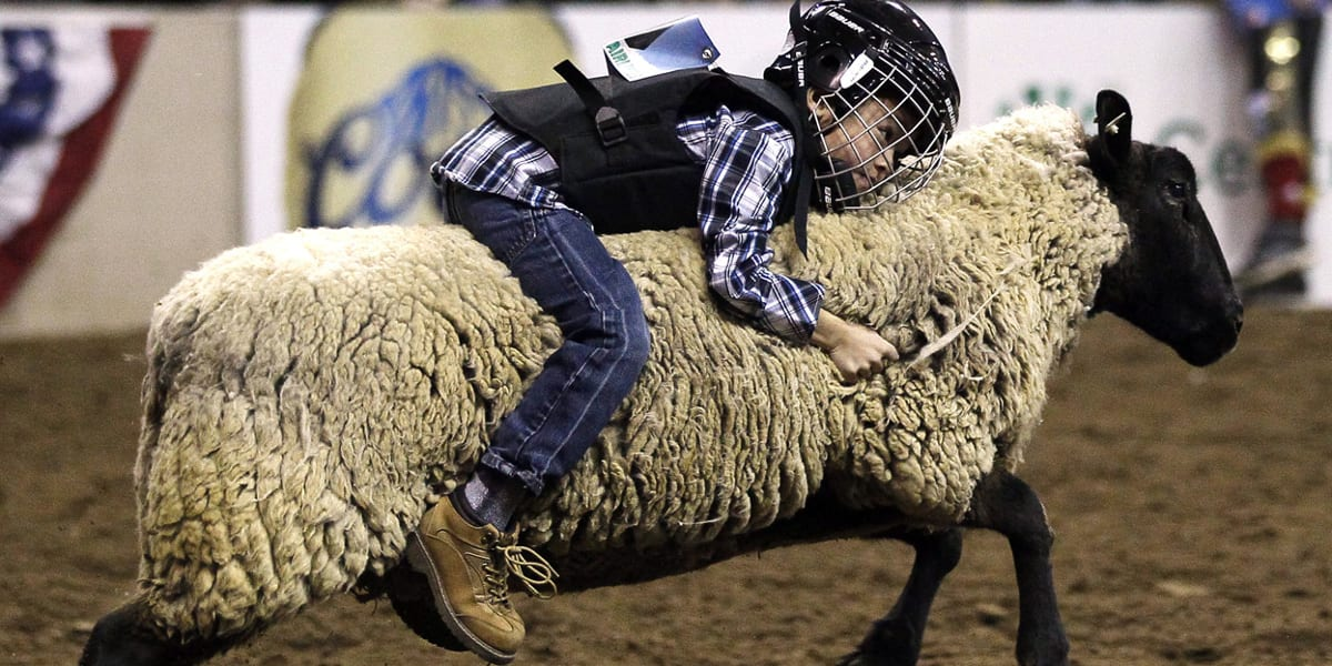 National Western Stock Show Mutton Bustin