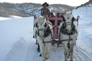 Saddleback Ranch Sleigh Rides