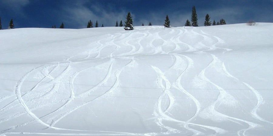 Silverton Powdercats Backcountry Skiing