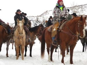 Steamboat Winter Carnival Horses