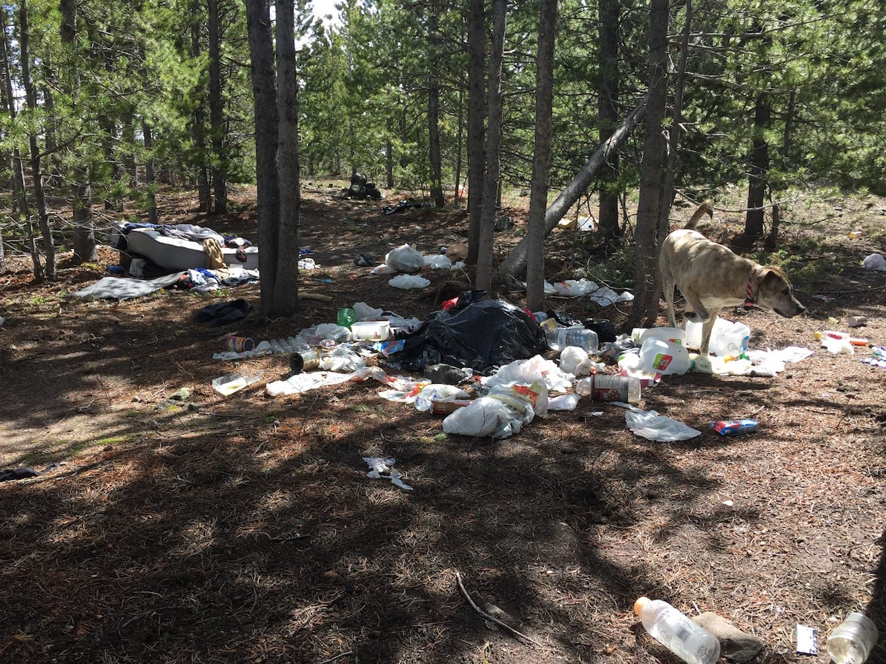 West Magnolia Camping Trash