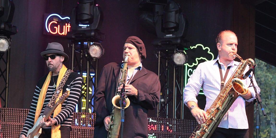 Telluride Blues Brews Festival Band