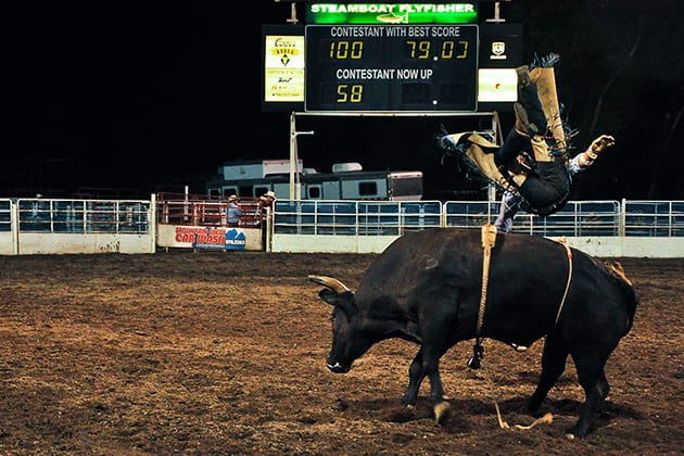Steamboat Springs Pro Rodeo Bull
