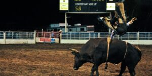 Pro Rodeo Returns to Steamboat Springs