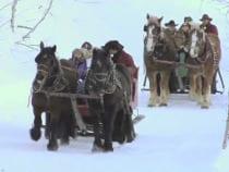 Buck's Livery Sleigh Ride
