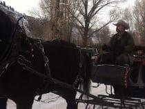Fantasy Ranch Sleigh Ride