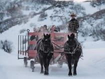 Saddleback Ranch Sleigh Ride