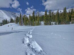 Snowshoeing Indian Peaks Wilderness Colorado