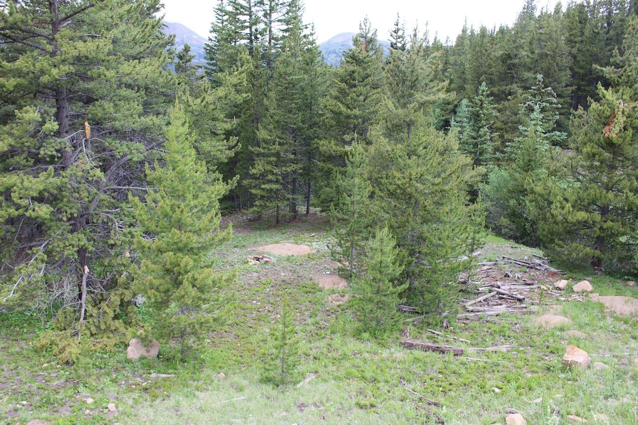 Boreas Pass Dispersed Campsite