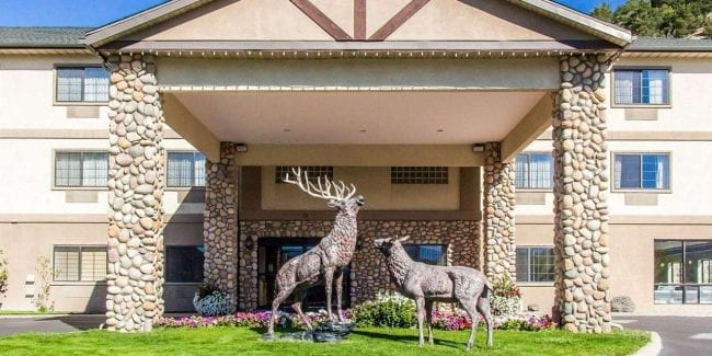 Best Hotels Eagle CO Comfort Inn Entrance Elk Statue