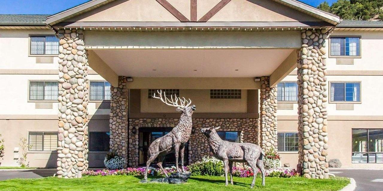 Best Hotels Eagle CO Comfort Inn Entrance Elk Statue