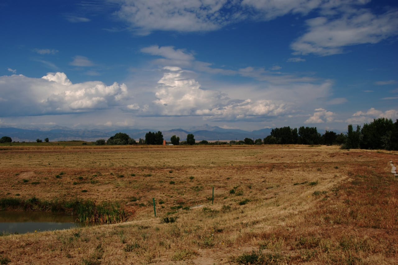 Erie Colorado Open Field
