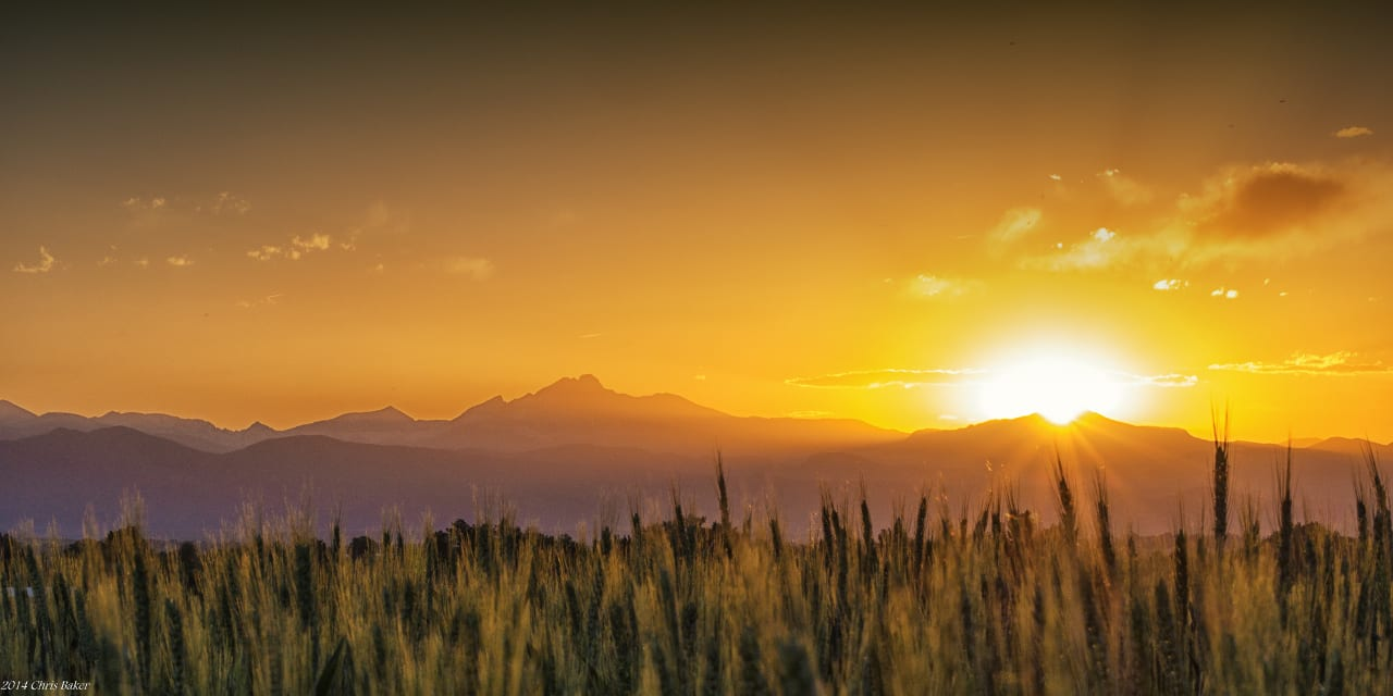 Erie Colorado Wheat Field Rocky Mountain Sunset