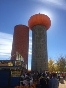 Anderson Farms Erie Pumpkin Silo