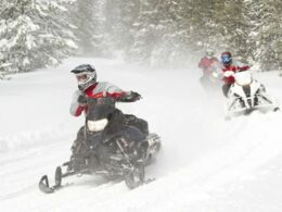 Backbone Adventures Snowmobiling Estes Park