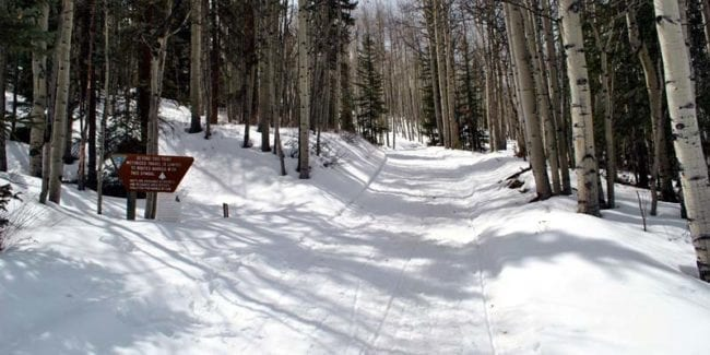 Lake City Snowmobiling Trail