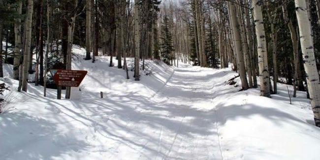Lake City Snowmobiling Trail