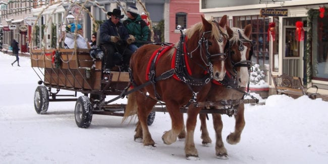 Georgetown Christmas Market Horse Wagon