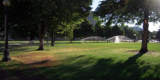 Colorado City Park
