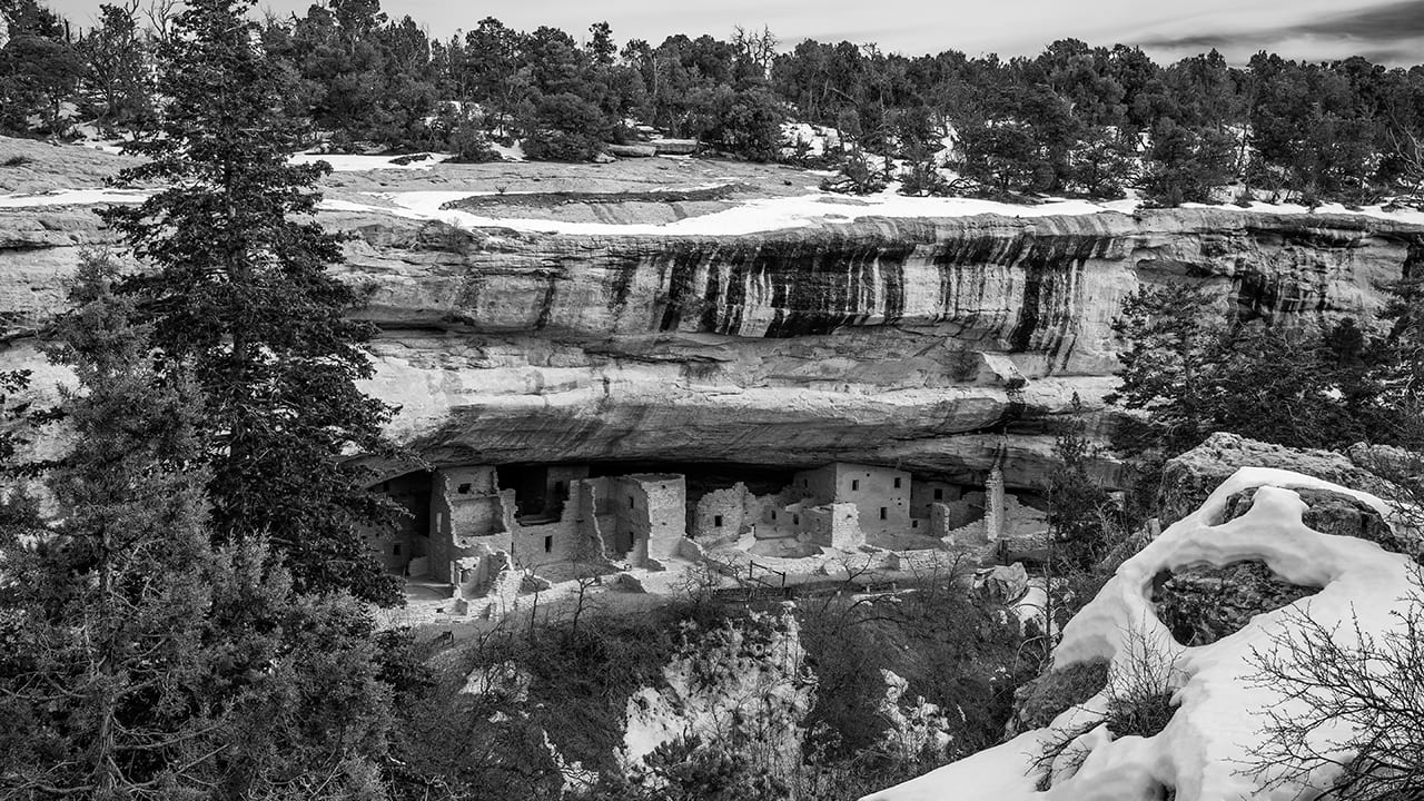 Mesa Verde Winter Spruce Tree House Monochrome