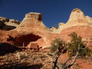Canyons Ancients Sand Canyon Trail Saddlehorn