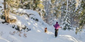 Snowshoeing Vallecito Creek Trail, The Weminuche Wilderness