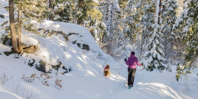 Snowshoeing Vallecito Creek