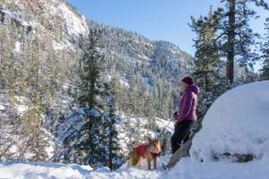 Snowshoeing Vallecito Creek.