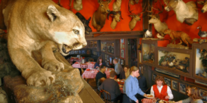 Top 10 Must-Try Denver Restaurants