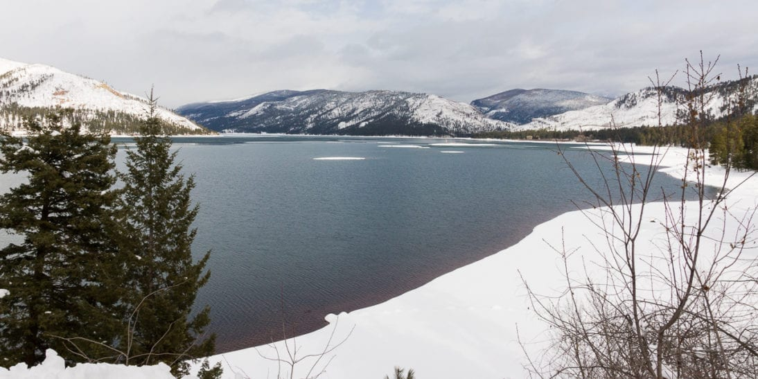 Bring Your Dog Cross Country Skiing at Durango's Vallecito Lake