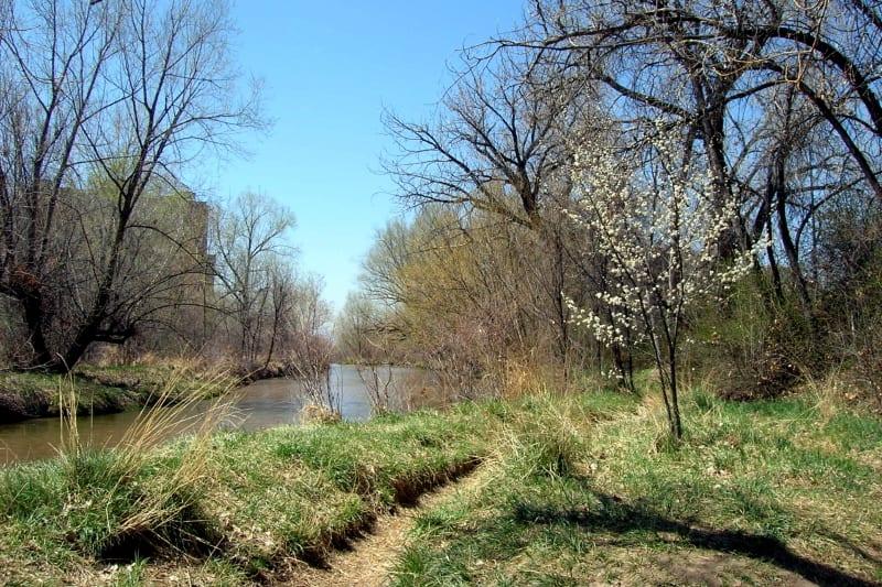 Cherry Creek Trail Glendale Colorado