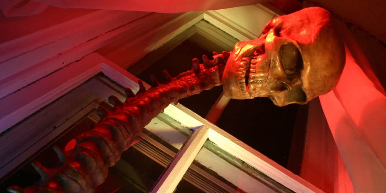 Denver Halloween Skeleton Window
