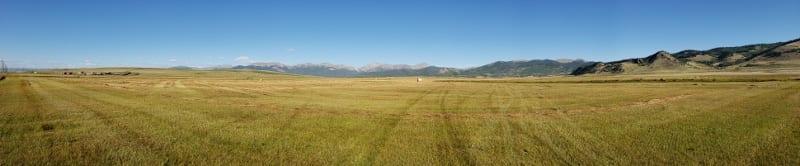 Wild Hay South Park Basin Colorado