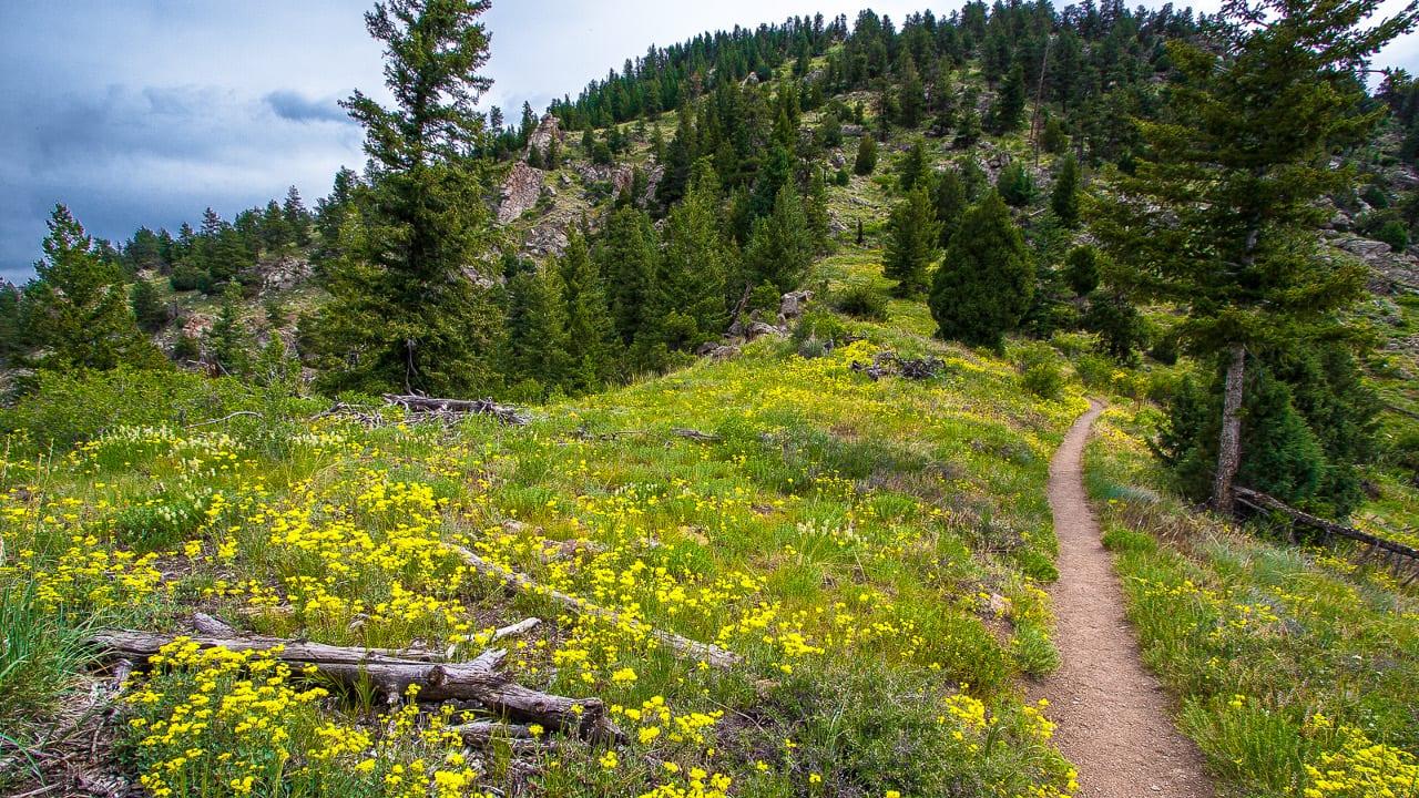 Eldorado Canyon State Park Hiking Trail