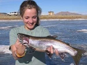 Colorado Rainbow Trout Eleven Mile Reservoir