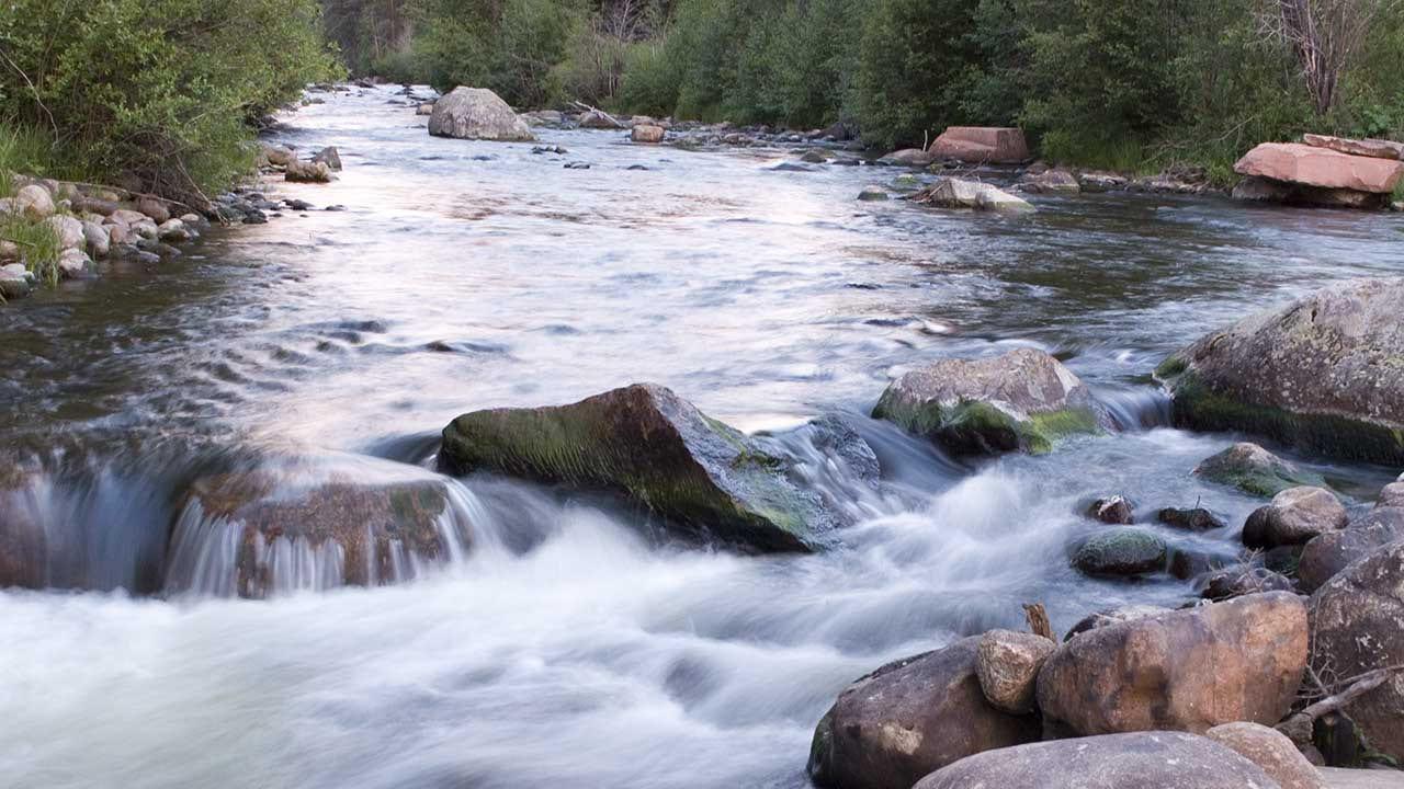 Frying Pan River Fishing Colorado