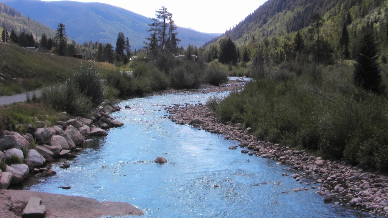 Gore Creek Fishing Colorado