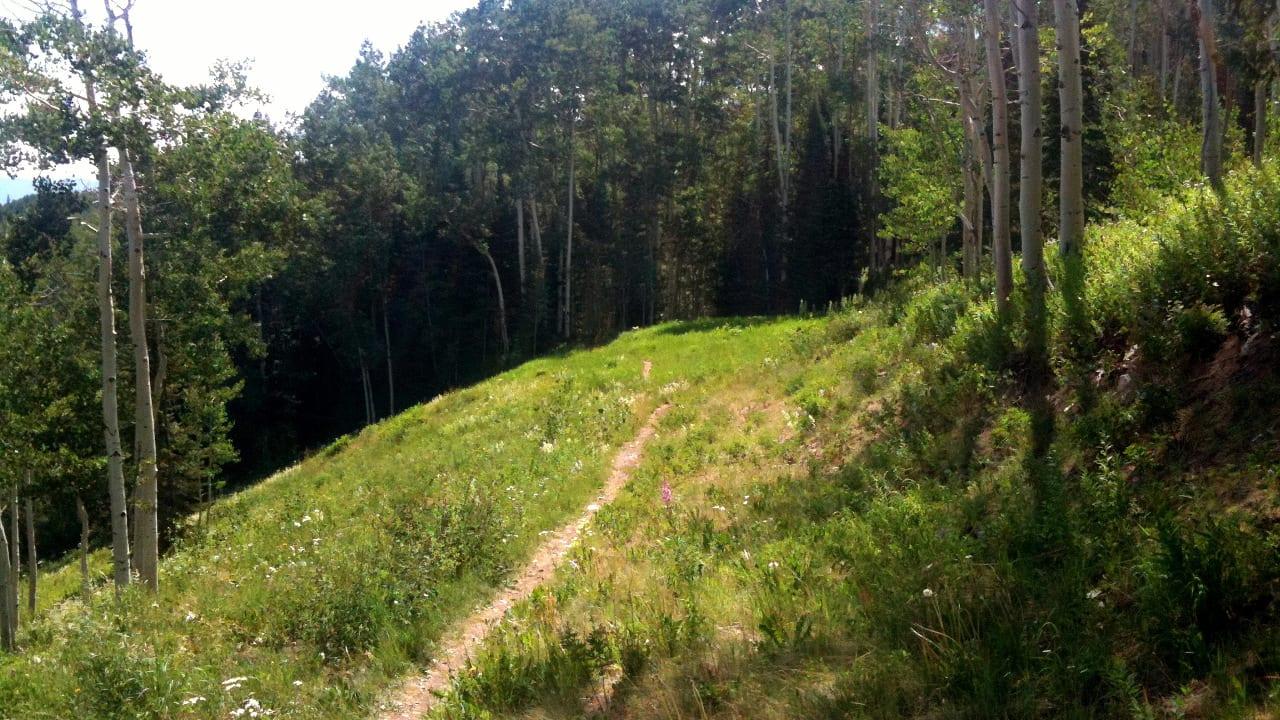 Government Trail Mountain Biking Aspen