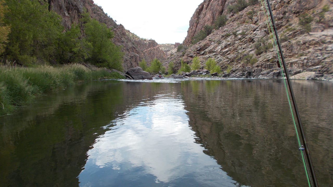 Gunnison River Fishing Colorado