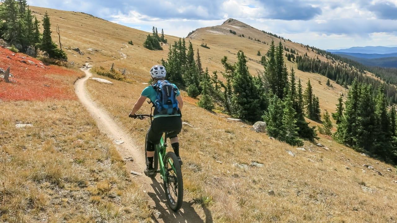 Monarch Crest Trail Mountain Biking Salida
