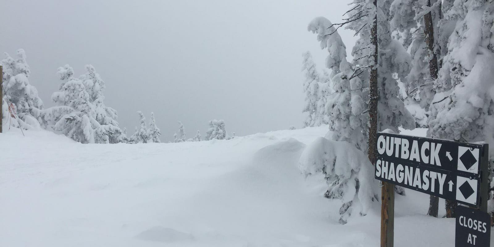 Monarch Mountain Ski Resort Expert Trails