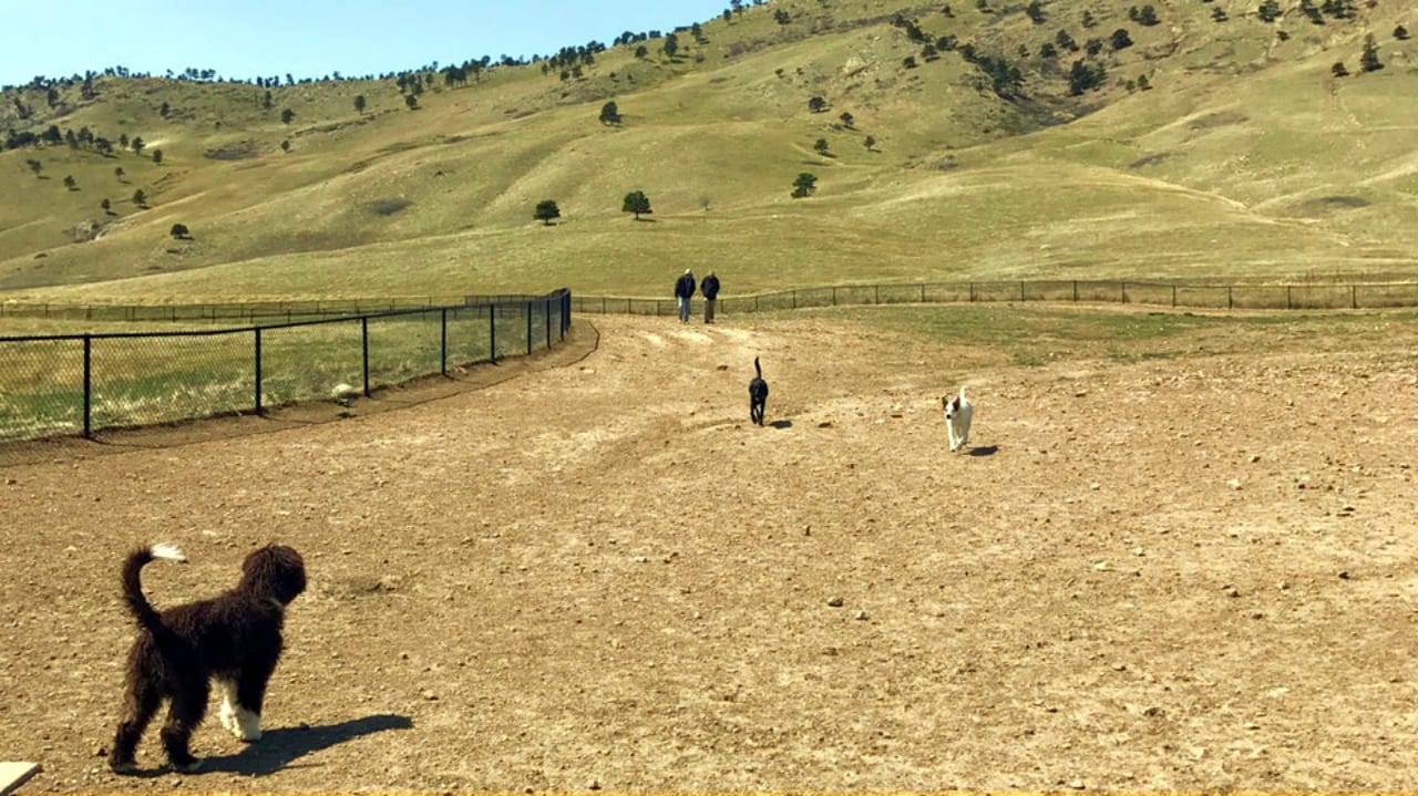 Foothills Community Dog Park Boulder Colorado