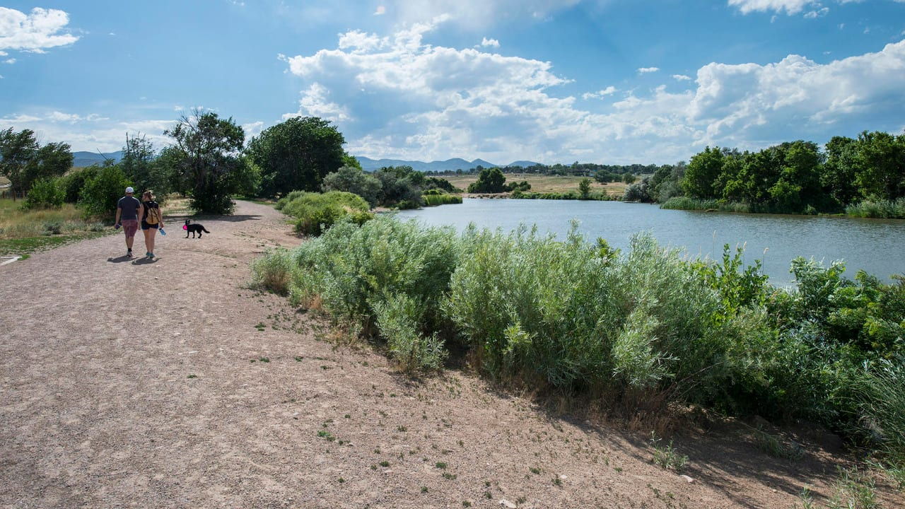 Chatfield State Park Off Leash Dog Area