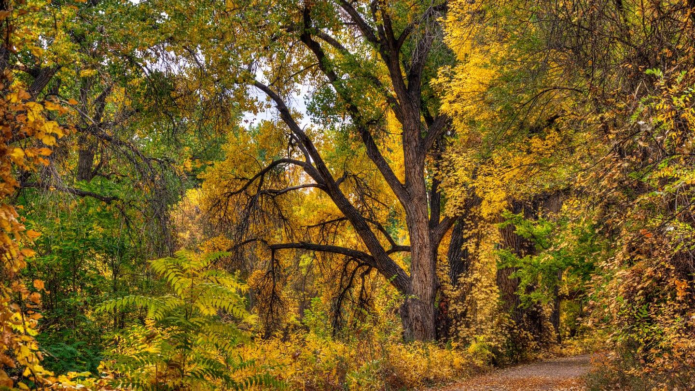 Visit Colorado Fall Arkansas Riverwalk Canon City