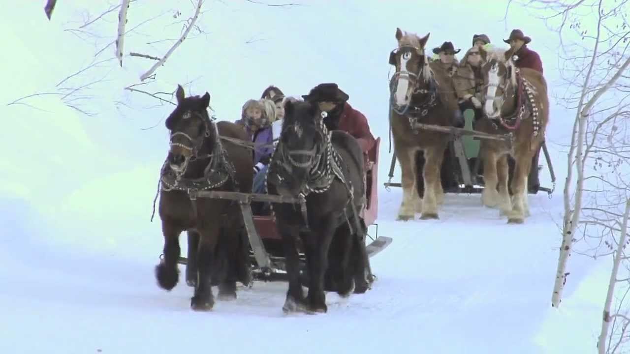 Buck's Livery Winter Sleigh Ride Colorado