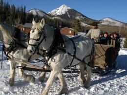 Hahns Peak Roadhouse Sleigh Ride Family